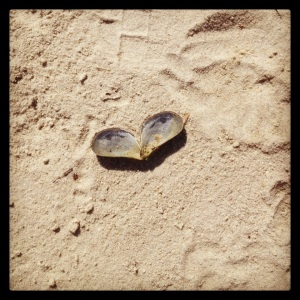 #signsoflove in the sand