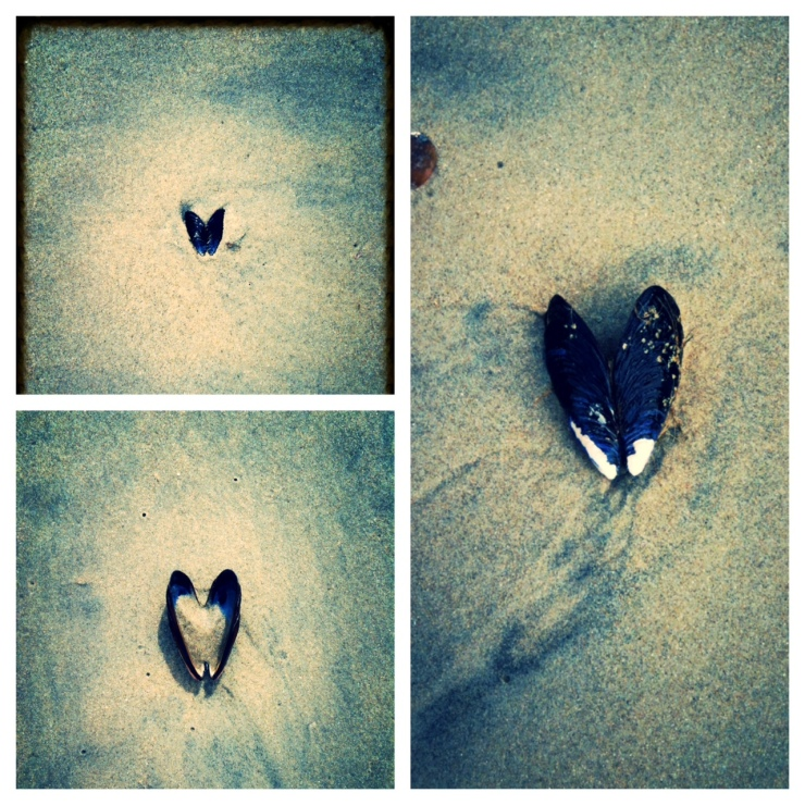 The beach is one of my favorite places to see #signsoflove.