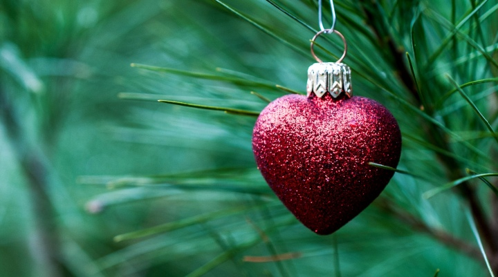 toy-christmas-heart-heart-red-branch-needles-pine-tree-holiday-decoration-christmas