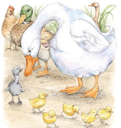 the-ugly-duckling-story-2